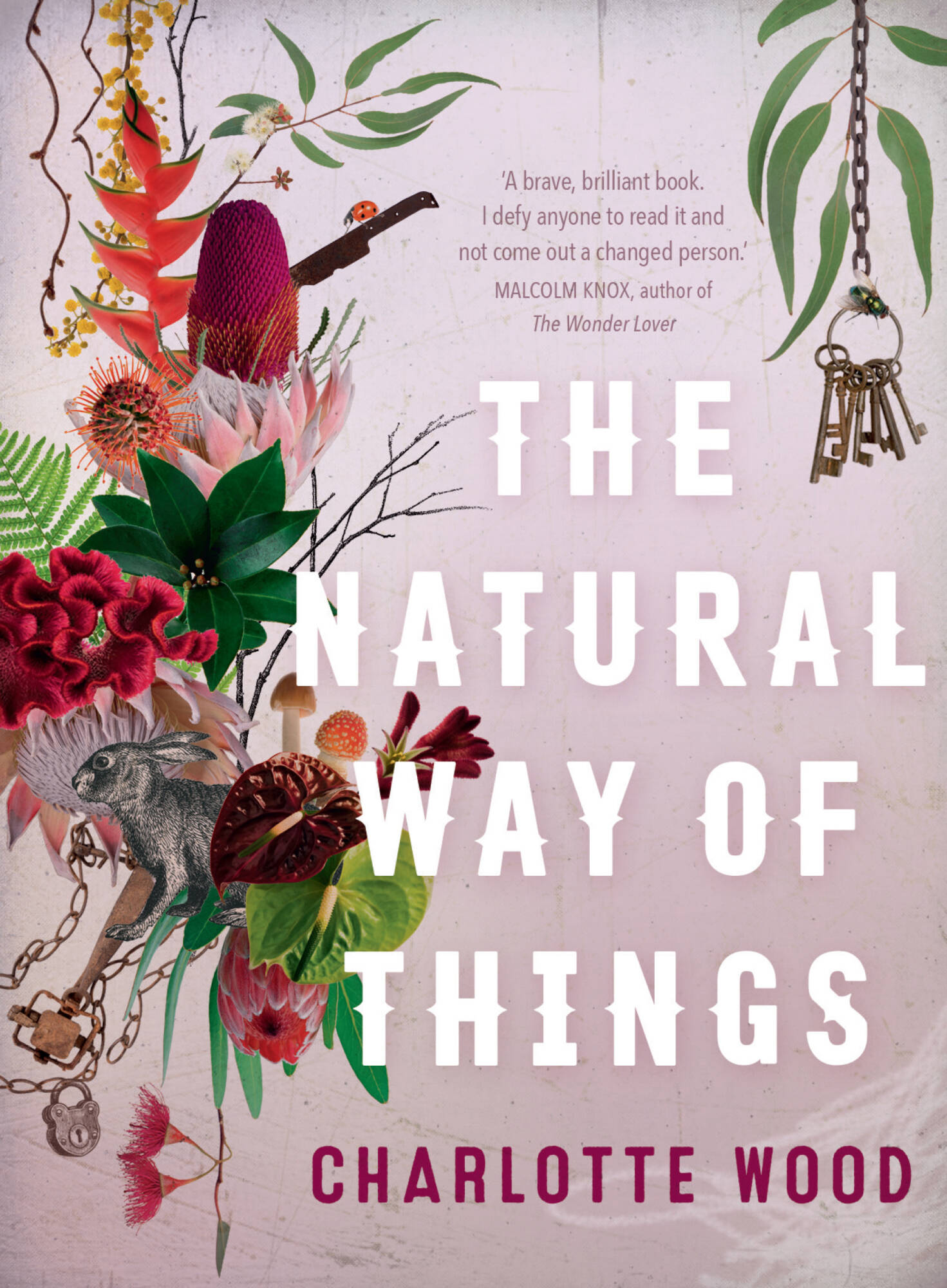 BOOK REVIEW: The Natural Way of Things – Charlotte Wood
